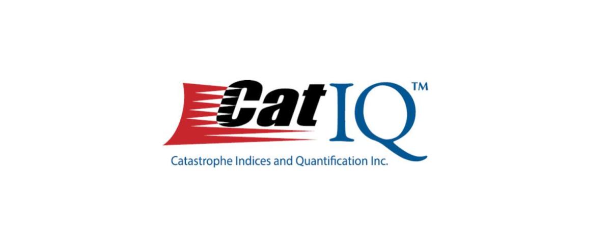 Old CatIQ Logo